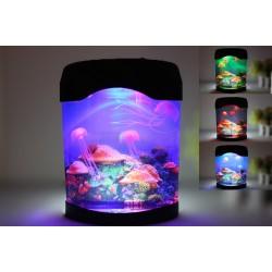 Jelly Fish Display Tank