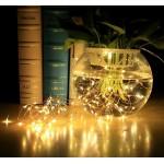 Mini LED Lights (Fairy Lights)