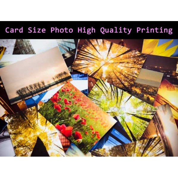 Card Size Photo High Quality Printing